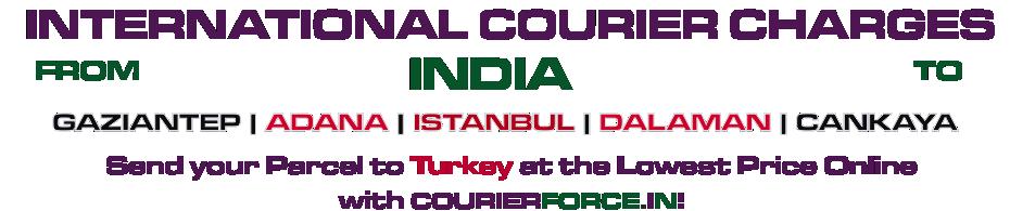 INTERNATIONAL COURIER SERVICE TO TURKEY