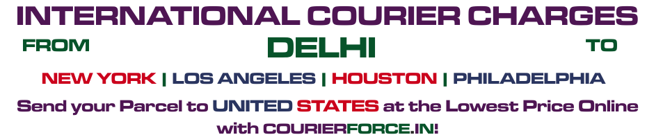 INTERNATIONAL COURIER SERVICE FROM DELHI TO USA