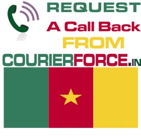 courier from cameroon