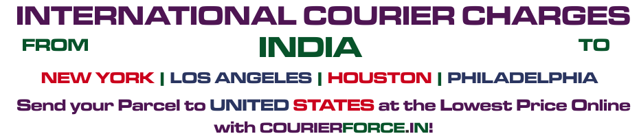 INTERNATIONAL COURIER SERVICE TO USA