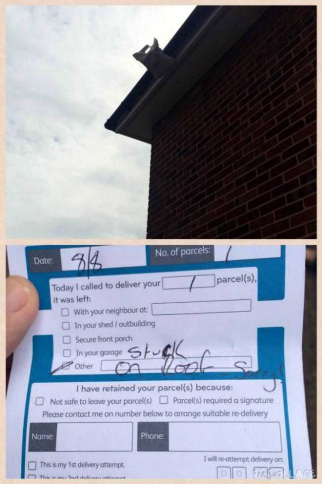 Parcel Stuck on Roof